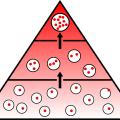 Nutriční medicína - léčba stravou poddohledem