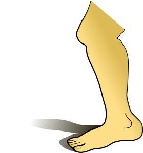 Bolest nohou a rakovina prostaty