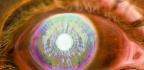 Jakou barvu kontaktních čoček zvolit