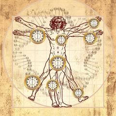 Biologické hodiny