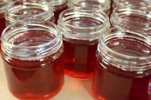 Smrkový med