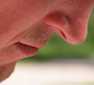 Regenerace nosní sliznice