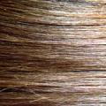 Jak na lupy ve vlasech