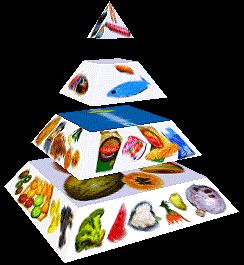 Jaterní dieta