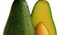 Pěstování avokáda zpecky